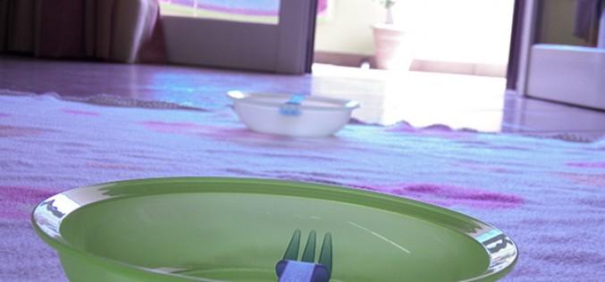 Imprevisti e picnic casalingo