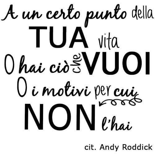 cit-andy-roddick-vita