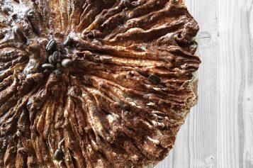 Cheesecake con Nutella e mele: una merenda primaverile