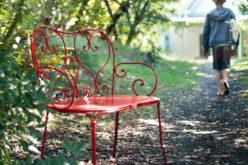 I benefici del giardinaggio: un'iniezione di buonumore