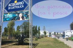 Acquario di Cattolica: il parco edutaiment per i bambini