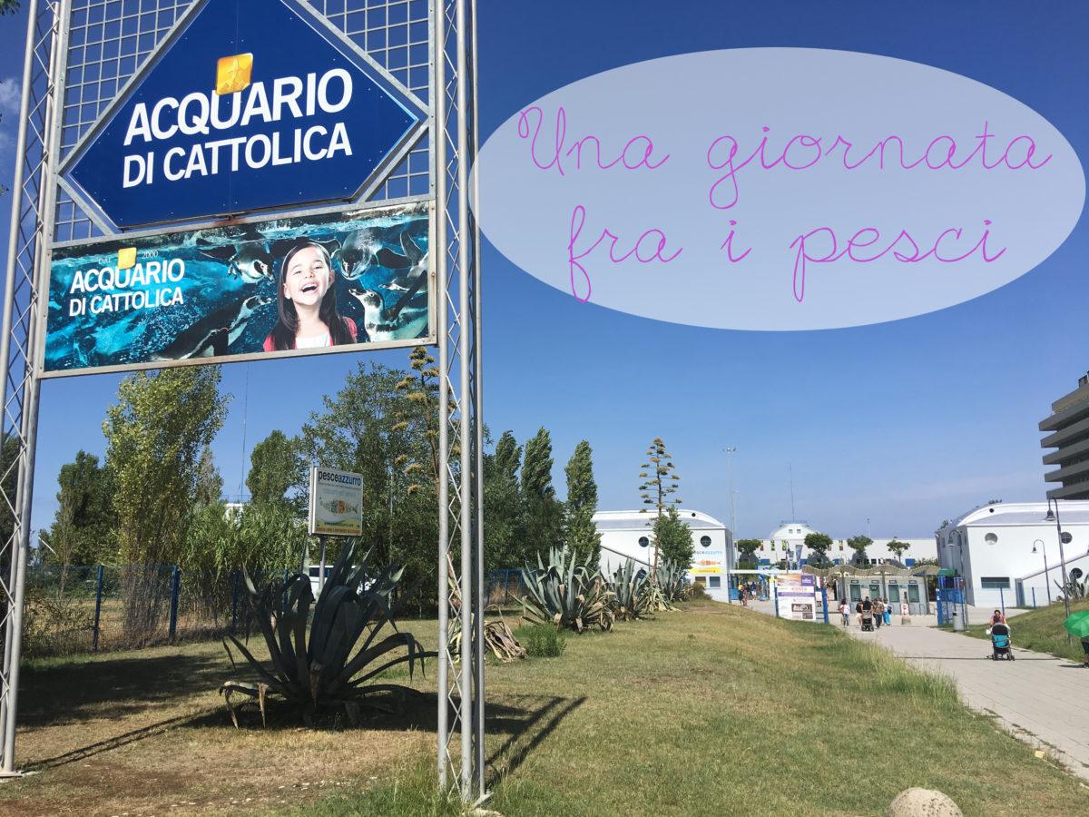 ACQUARIO DI CATTOLICA - UNA GIORNATA FRA I PESCI